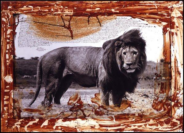 peter_beard_serengeti_lion