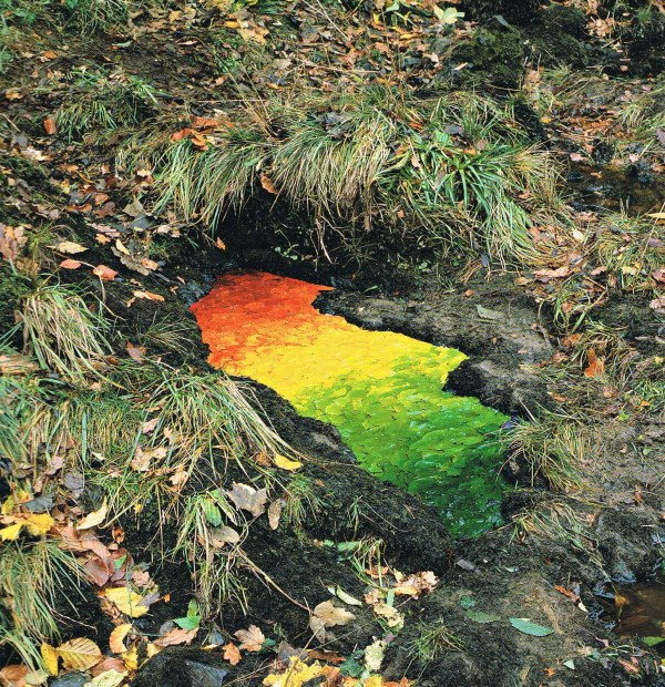 Goldsworthy-Leaf-Rainbow