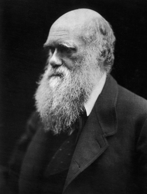 800px-Charles_Darwin_photograph_by_Julia_Margaret_Cameron,_1968