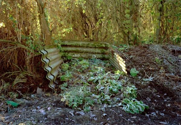 Komposthaufen