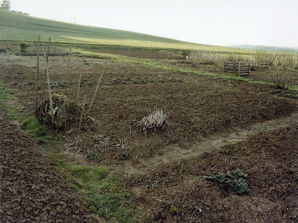Nieweg-Grabeland,-Haertsfeld,-Schwaebische-Alb-2000